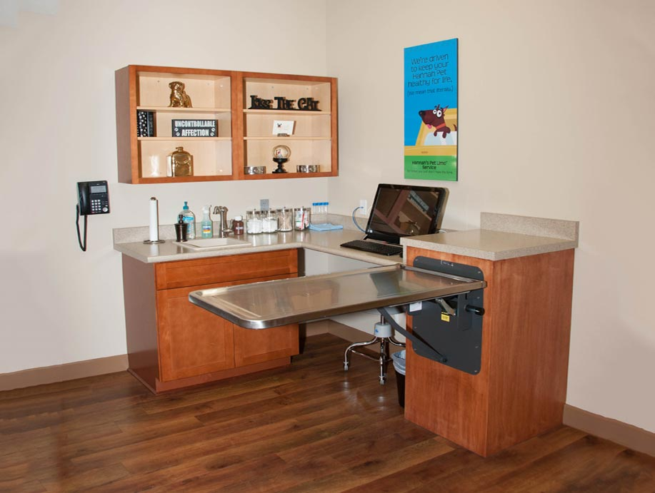 Hannah Veterinary Hospital - East Patient Room